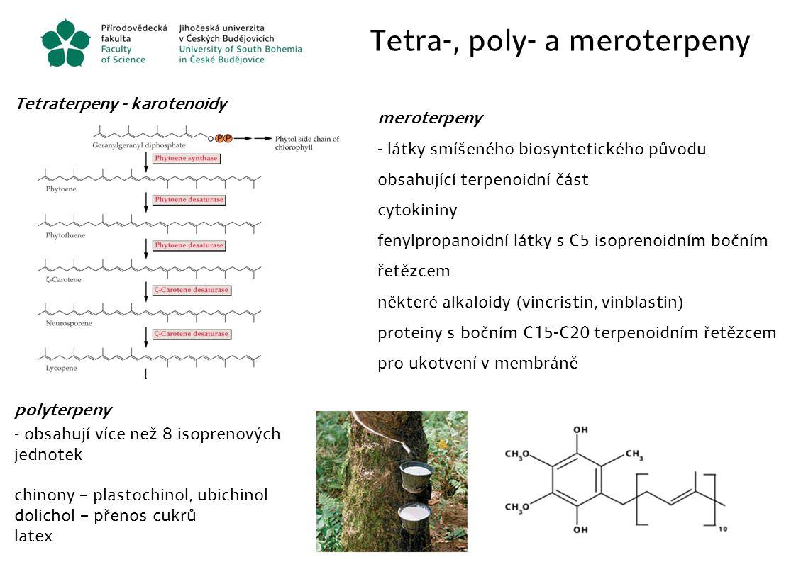 Tetra-, poly- a meroterpeny Tetraterpeny - karotenoidy polyterpeny - obsahují více než 8 isoprenových jednotek chinony – plastochinol, ubichinol dolic