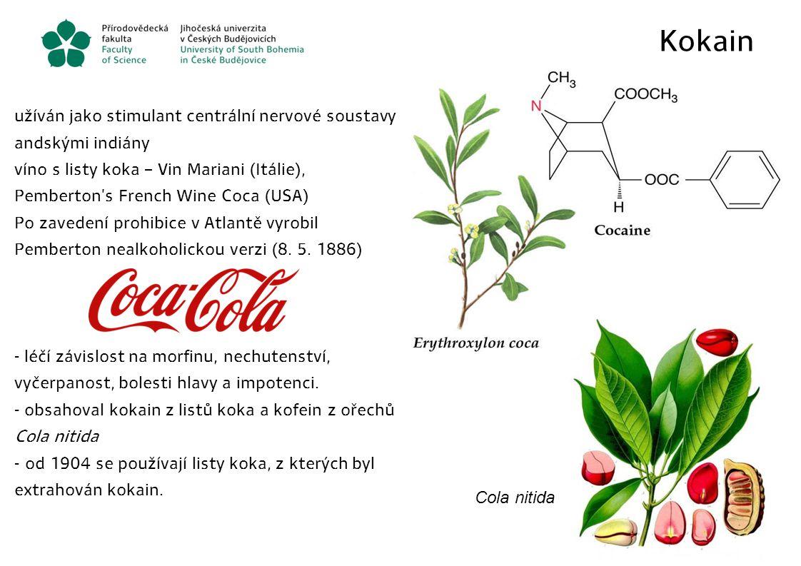 Kokain užíván jako stimulant centrální nervové soustavy andskými indiány víno s listy koka – Vin Mariani (Itálie), Pemberton's French Wine Coca (USA)