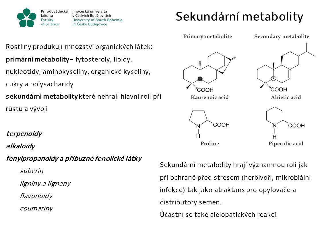 Sekundární metabolity Rostliny produkují množství organických látek: primární metabolity – fytosteroly, lipidy, nukleotidy, aminokyseliny, organické k