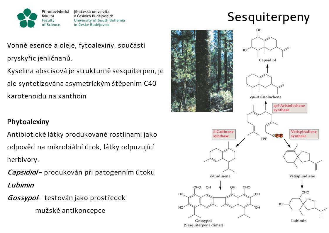 Sesquiterpeny Vonné esence a oleje, fytoalexiny, součástí pryskyřic jehličnanů. Kyselina abscisová je strukturně sesquiterpen, je ale syntetizována as