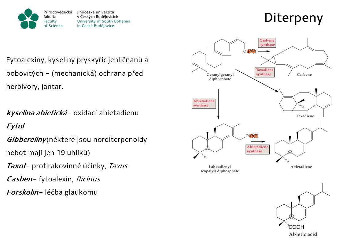 Diterpeny Fytoalexiny, kyseliny pryskyřic jehličnanů a bobovitých – (mechanická) ochrana před herbivory, jantar. kyselina abietická – oxidací abietadi