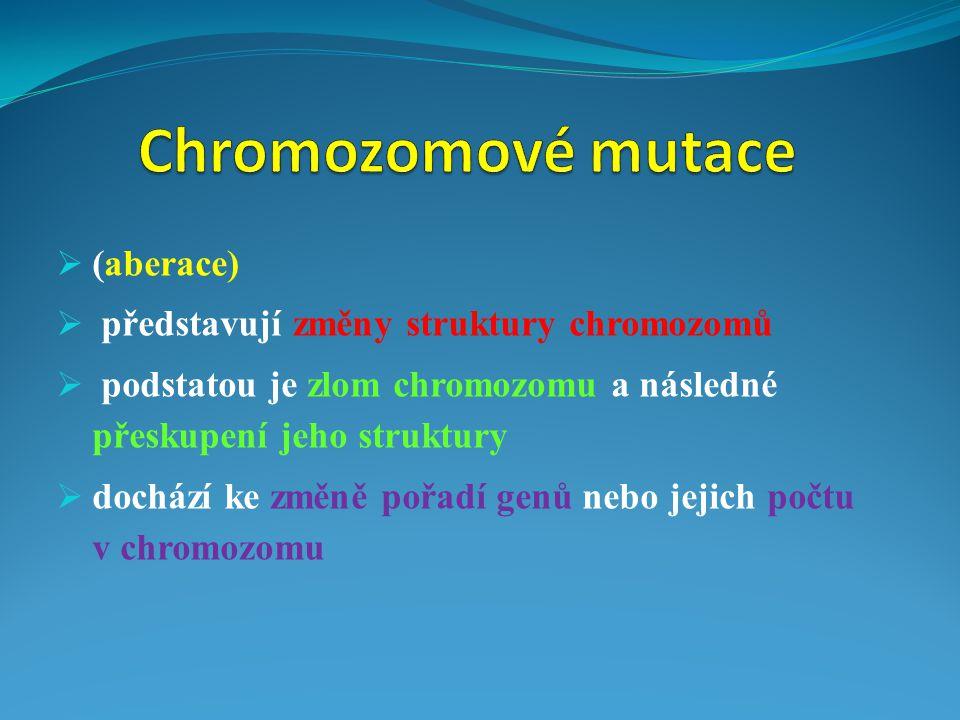  (aberace)  představují změny struktury chromozomů  podstatou je zlom chromozomu a následné přeskupení jeho struktury  dochází ke změně pořadí gen