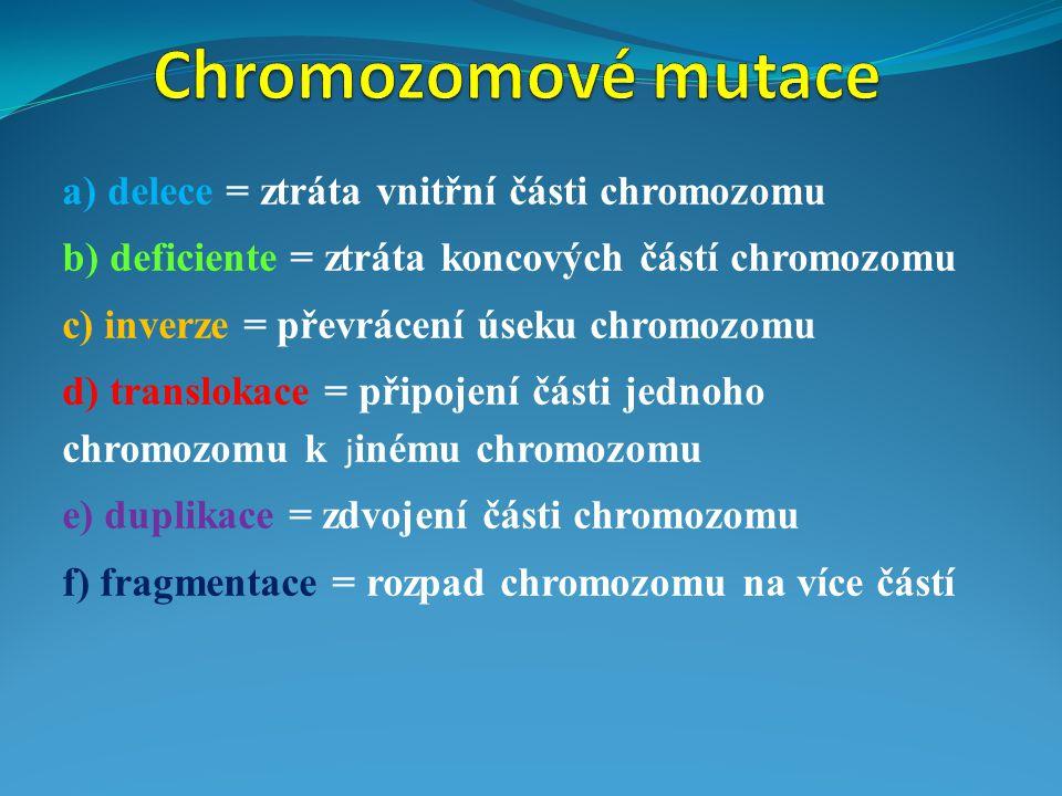 a) delece = ztráta vnitřní části chromozomu b) deficiente = ztráta koncových částí chromozomu c) inverze = převrácení úseku chromozomu d) translokace