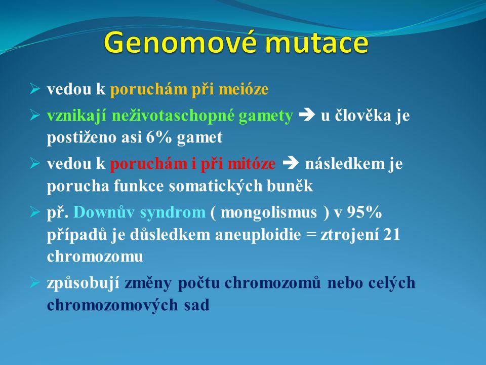  vedou k poruchám při meióze  vznikají neživotaschopné gamety  u člověka je postiženo asi 6% gamet  vedou k poruchám i při mitóze  následkem je p