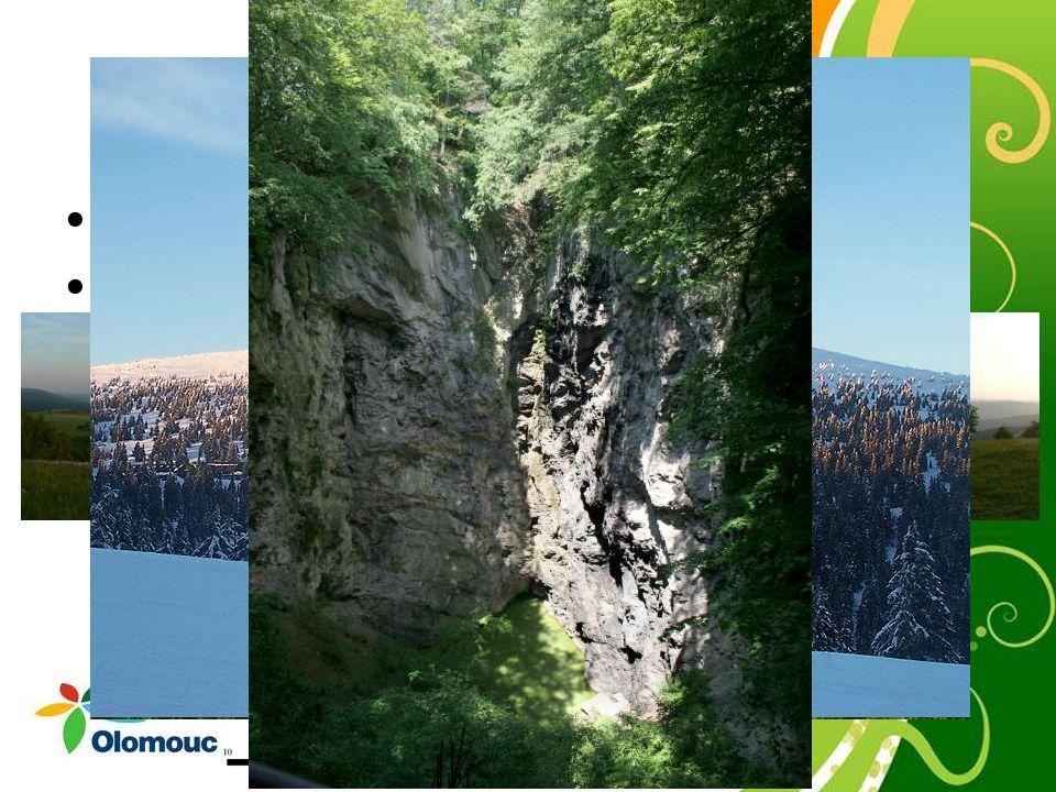 Přírodní podmínky Hornomoravský úval Pohoří: Nízký Jeseník, Hrubý Jeseník Nejvyšší bod: Praděd, (1 491 m, Hrubý Jeseník) Nejnižší bod: Hranická propas