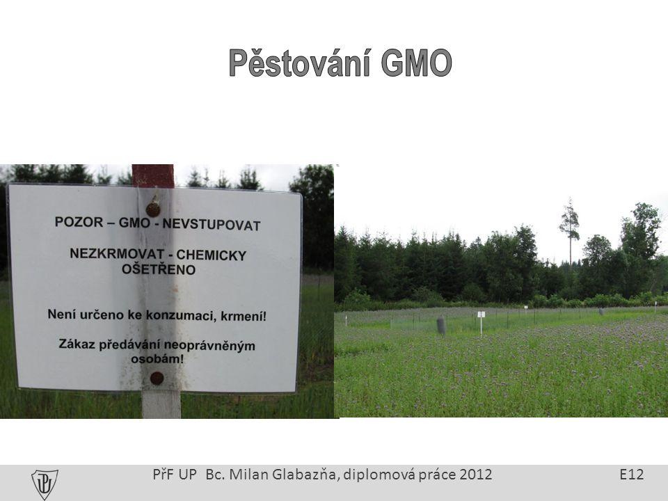 PřF UP Bc. Milan Glabazňa, diplomová práce 2012 E12