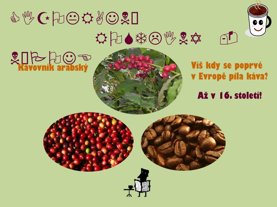 CIZOKRAJNÉ ROSTLINY - NÁPOJE Kávovník arabský Víš kdy se poprvé v Evropě pila káva? Až v 16. století!
