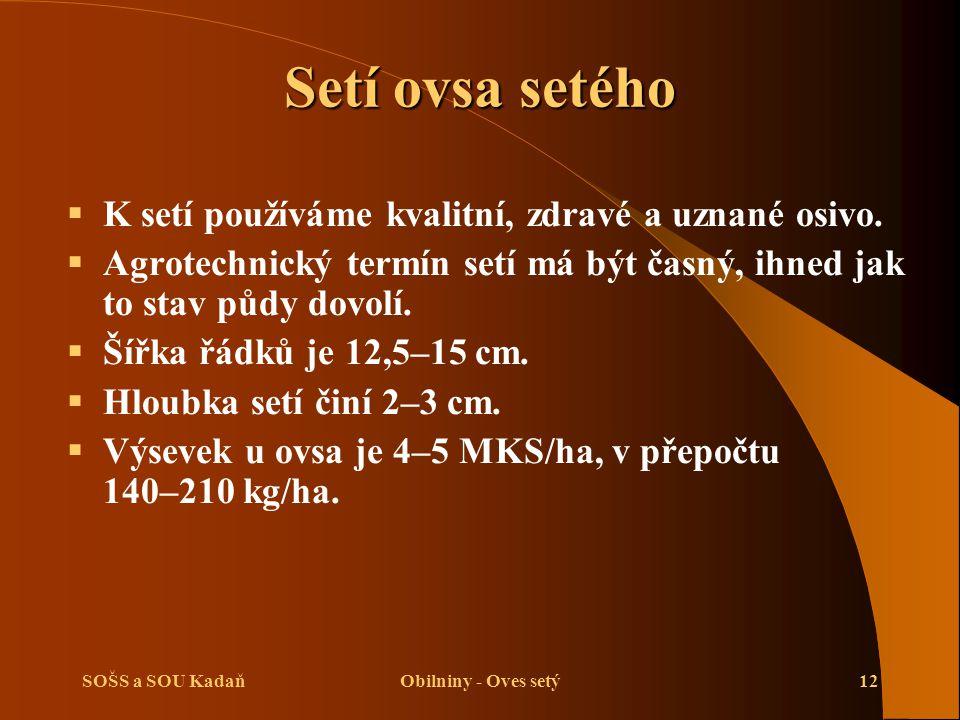 SOŠS a SOU KadaňObilniny - Oves setý12 Setí ovsa setého  K setí používáme kvalitní, zdravé a uznané osivo.  Agrotechnický termín setí má být časný,