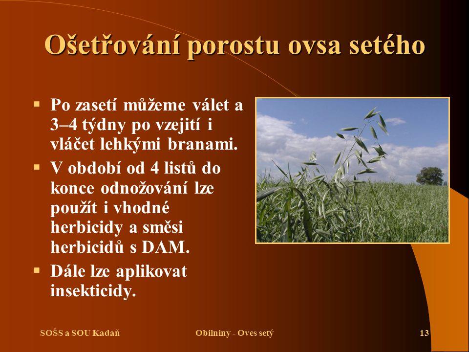 SOŠS a SOU KadaňObilniny - Oves setý13 Ošetřování porostu ovsa setého  Po zasetí můžeme válet a 3–4 týdny po vzejití i vláčet lehkými branami.  V ob