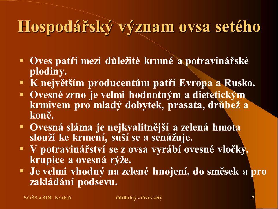 SOŠS a SOU KadaňObilniny - Oves setý2 Hospodářský význam ovsa setého  Oves patří mezi důležité krmné a potravinářské plodiny.  K největším producent