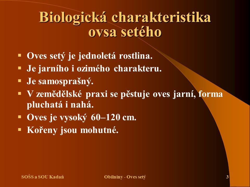 SOŠS a SOU KadaňObilniny - Oves setý3 Biologická charakteristika ovsa setého  Oves setý je jednoletá rostlina.  Je jarního i ozimého charakteru.  J