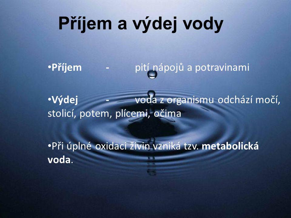Příjem a výdej vody Příjem-pití nápojů a potravinami Výdej-voda z organismu odchází močí, stolicí, potem, plícemi, očima Při úplné oxidaci živin vzniká tzv.