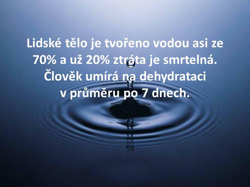 Lidské tělo je tvořeno vodou asi ze 70% a už 20% ztráta je smrtelná.