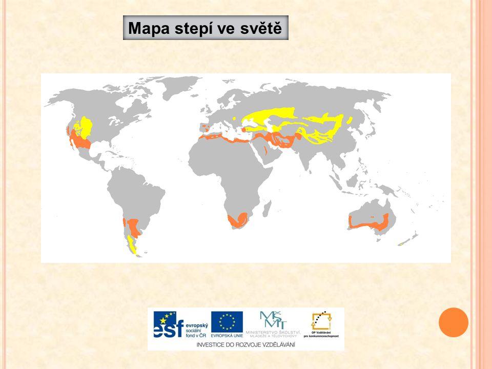 Mapa stepí ve světě