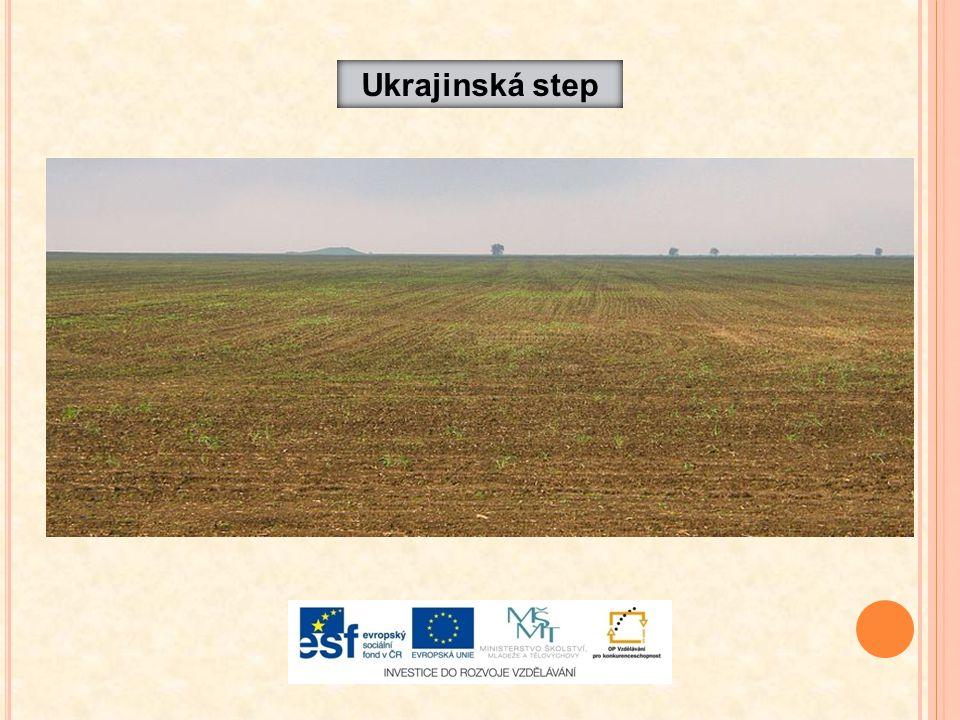 Ukrajinská step