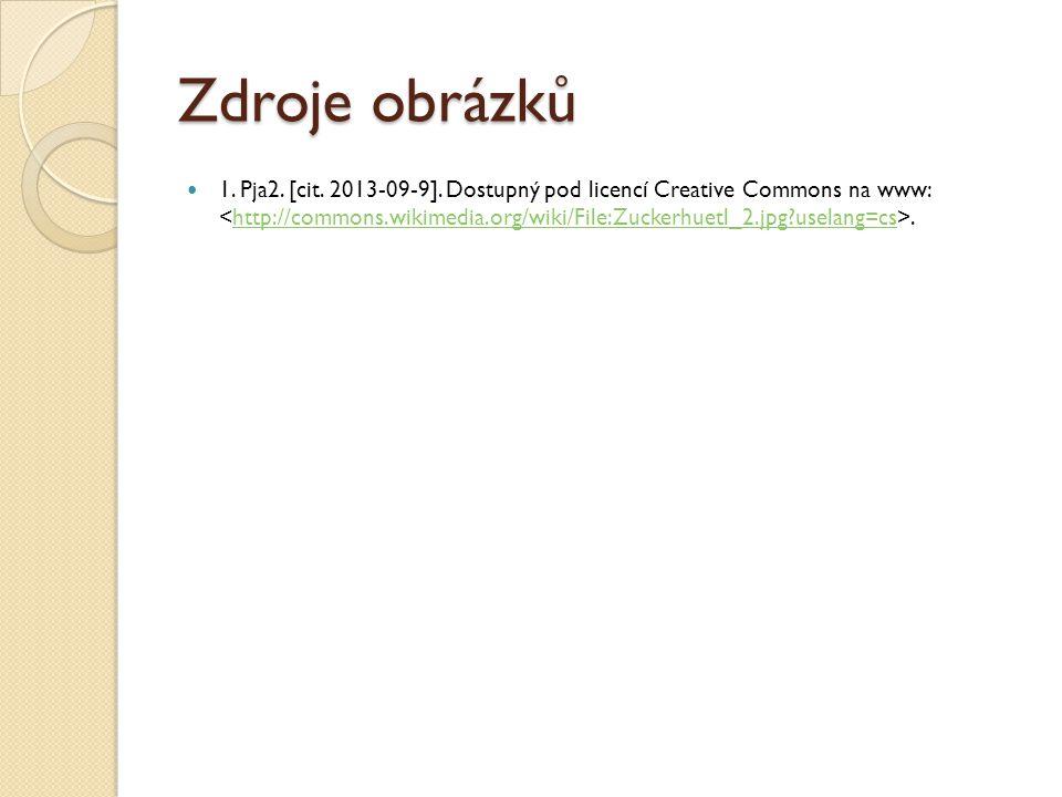 Zdroje obrázků 1. Pja2. [cit. 2013-09-9]. Dostupný pod licencí Creative Commons na www:.http://commons.wikimedia.org/wiki/File:Zuckerhuetl_2.jpg?usela