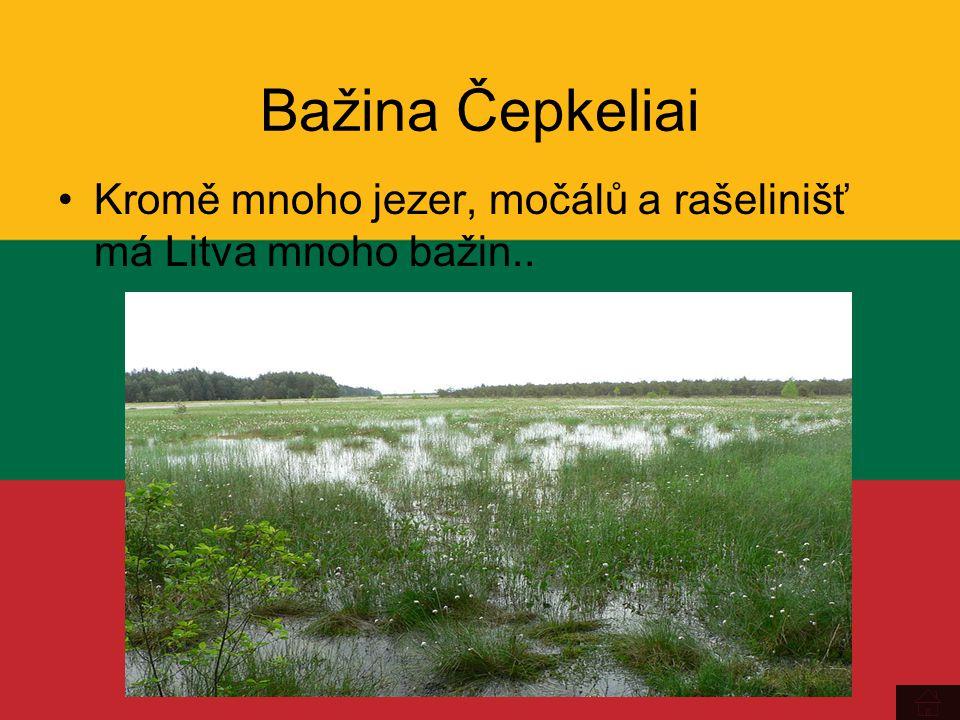 Bažina Čepkeliai Kromě mnoho jezer, močálů a rašelinišť má Litva mnoho bažin..