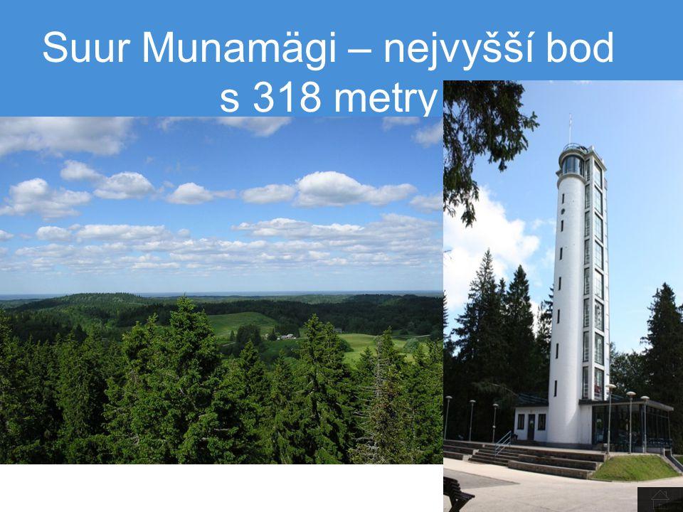 Suur Munamägi – nejvyšší bod s 318 metry
