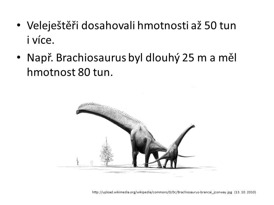 Veleještěři dosahovali hmotnosti až 50 tun i více.