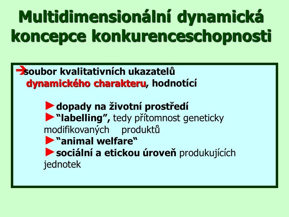 Multidimensionální dynamická koncepce konkurenceschopnosti  soubor kvalitativních ukazatelů dynamického charakteru dynamického charakteru, hodnotící