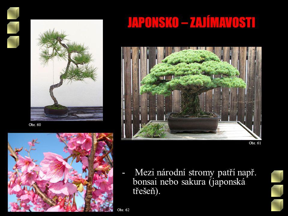 JAPONSKO – ZAJÍMAVOSTI Obr. 61 Obr. 60 - Mezi národní stromy patří např.