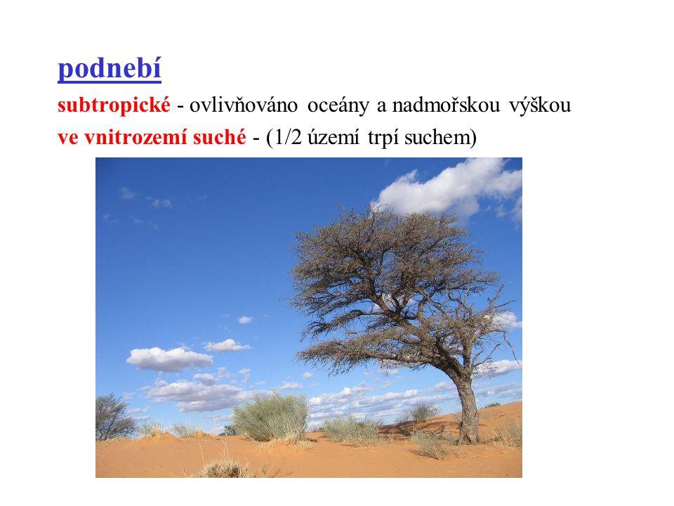 podnebí subtropické - ovlivňováno oceány a nadmořskou výškou ve vnitrozemí suché - (1/2 území trpí suchem)