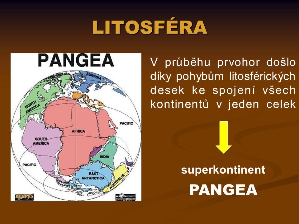 Jaké důkazy mohou dokládat existenci Pangey.