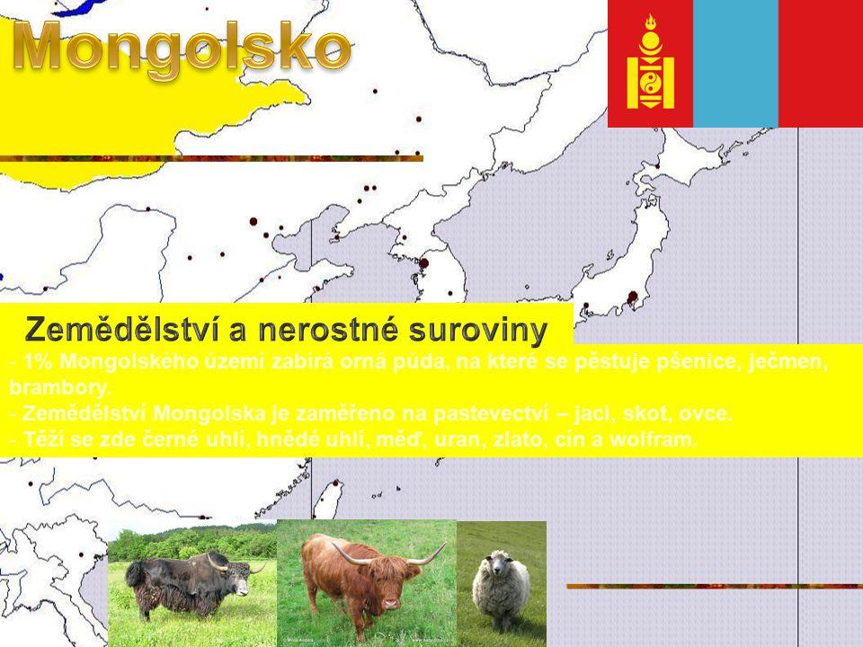 - 1% Mongolského území zabírá orná půda, na které se pěstuje pšenice, ječmen, brambory.