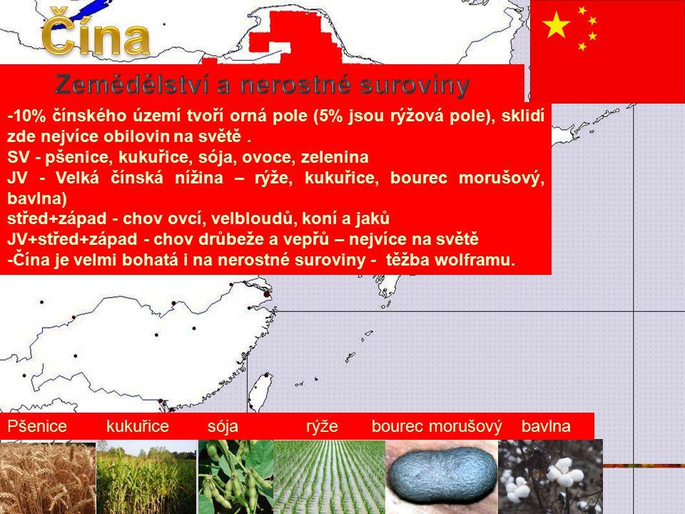-10% čínského území tvoří orná pole (5% jsou rýžová pole), sklidí zde nejvíce obilovin na světě.