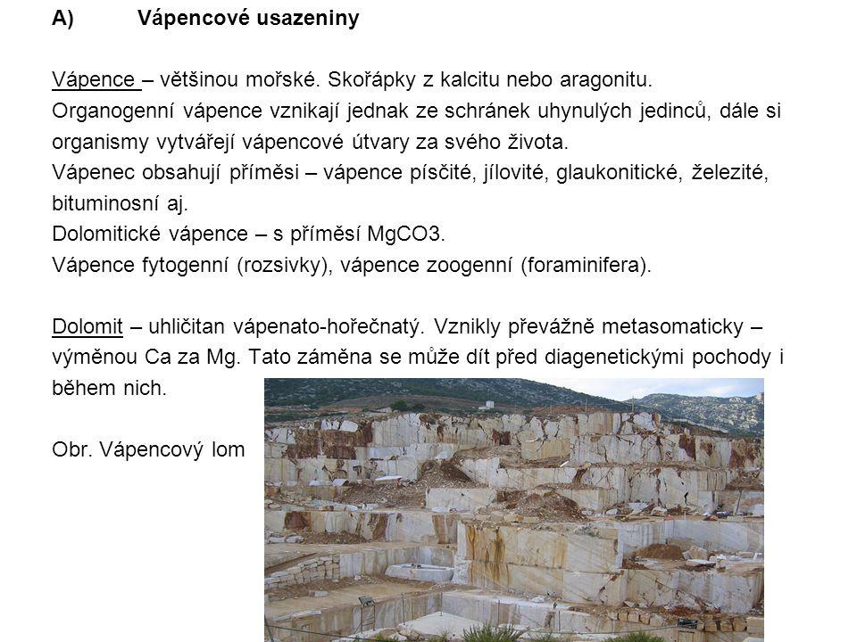 A) Vápencové usazeniny Vápence – většinou mořské. Skořápky z kalcitu nebo aragonitu. Organogenní vápence vznikají jednak ze schránek uhynulých jedinců
