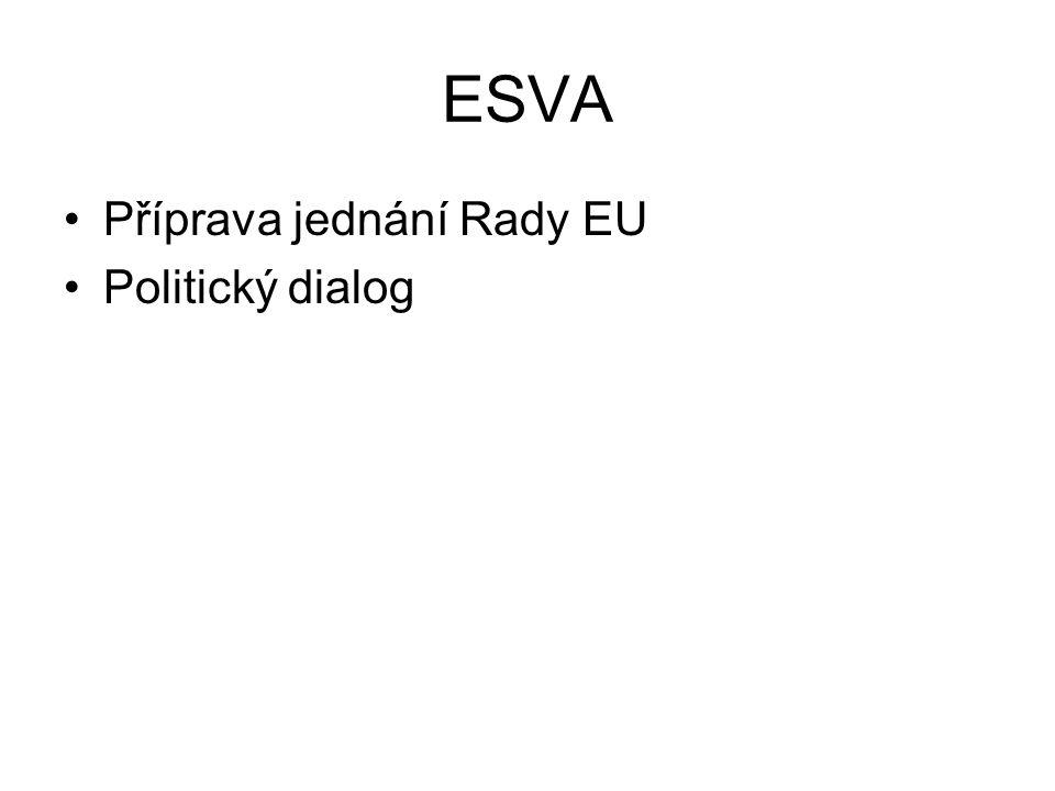 Příprava jednání Rady EU Politický dialog