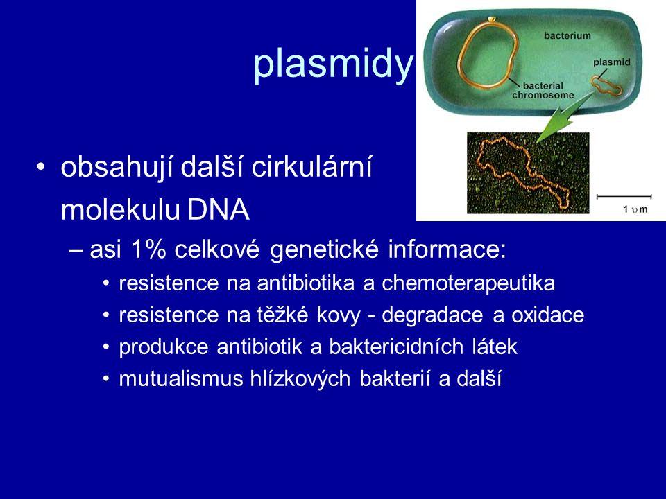 plasmidy obsahují další cirkulární molekulu DNA –asi 1% celkové genetické informace: resistence na antibiotika a chemoterapeutika resistence na těžké kovy - degradace a oxidace produkce antibiotik a baktericidních látek mutualismus hlízkových bakterií a další