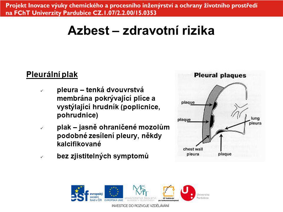 Azbest – zdravotní rizika Pleurální plak pleura – tenká dvouvrstvá membrána pokrývající plíce a vystýlající hrudník (poplicnice, pohrudnice) plak – ja