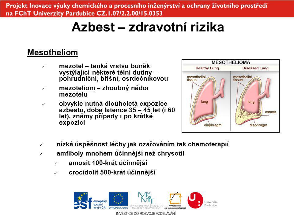 Azbest – zdravotní rizika Mesotheliom mezotel – tenká vrstva buněk vystýlající některé tělní dutiny – pohrudniční, břišní, osrdečníkovou mezoteliom –