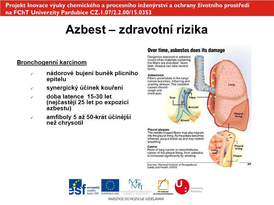 Azbest – zdravotní rizika Bronchogenní karcinom nádorové bujení buněk plicního epitelu synergický účinek kouření doba latence 15-30 let (nejčastěji 25