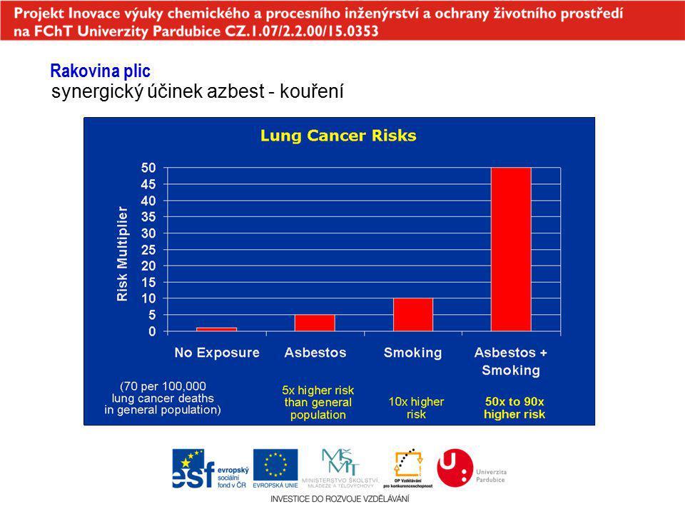 synergický účinek azbest - kouření Rakovina plic