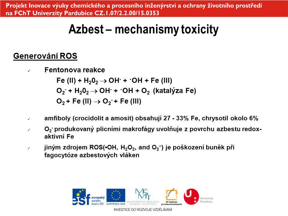 Azbest – mechanismy toxicity Generování ROS Fentonova reakce Fe (II) + H 2 0 2  OH - + ·OH + Fe (III) O 2 - + H 2 0 2  OH - + ·OH + O 2 (katalýza Fe