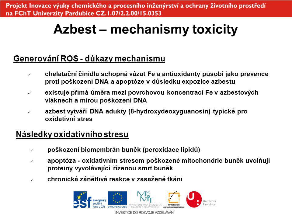 Azbest – mechanismy toxicity Generování ROS - důkazy mechanismu chelatační činidla schopná vázat Fe a antioxidanty působí jako prevence proti poškozen