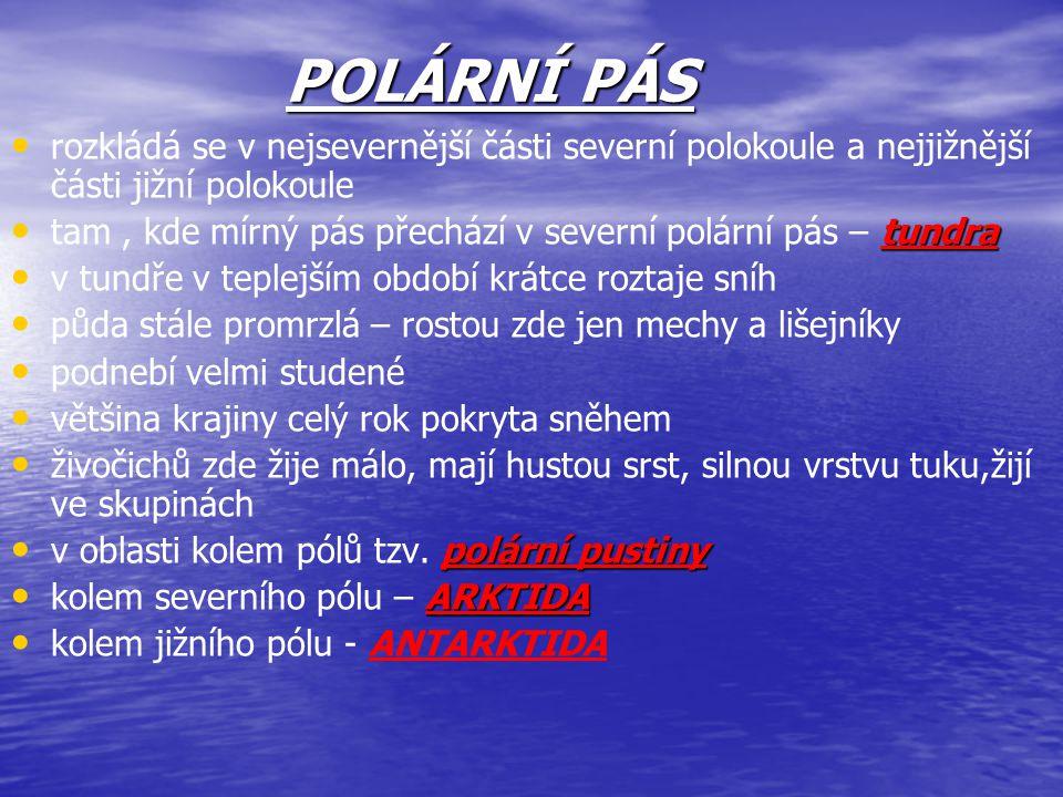 POLÁRNÍ PÁS rozkládá se v nejsevernější části severní polokoule a nejjižnější části jižní polokoule tundra tam, kde mírný pás přechází v severní polár