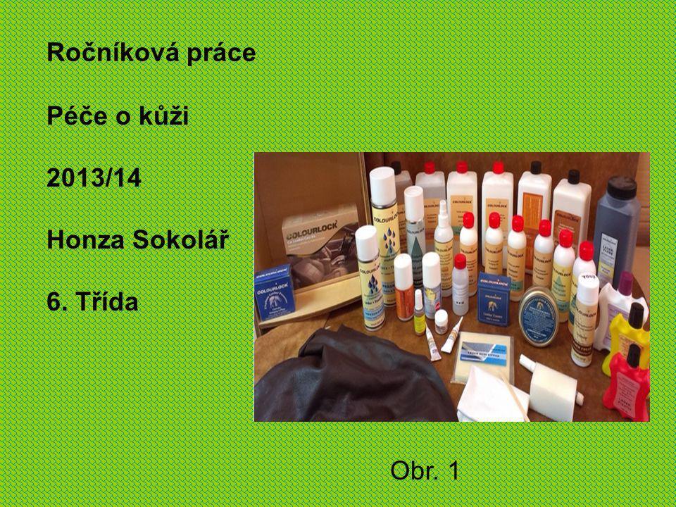 Péče o kůži 2013/14 Honza Sokolář Ročníková práce 6. Třída Obr. 1