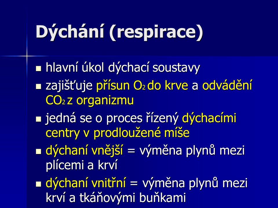 Dýchání (respirace) hlavní úkol dýchací soustavy hlavní úkol dýchací soustavy zajišťuje přísun O 2 do krve a odvádění CO 2 z organizmu zajišťuje přísun O 2 do krve a odvádění CO 2 z organizmu jedná se o proces řízený dýchacími centry v prodloužené míše jedná se o proces řízený dýchacími centry v prodloužené míše dýchaní vnější = výměna plynů mezi plícemi a krví dýchaní vnější = výměna plynů mezi plícemi a krví dýchaní vnitřní = výměna plynů mezi krví a tkáňovými buňkami dýchaní vnitřní = výměna plynů mezi krví a tkáňovými buňkami
