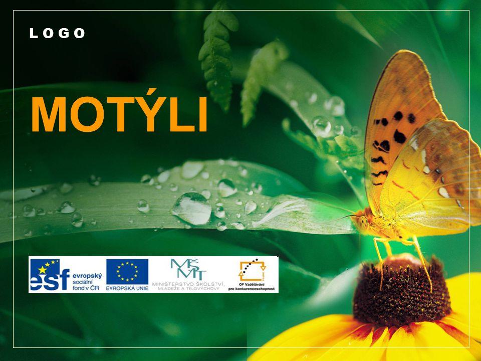 www.themegallery.com Životní cyklus motýla Text 1.