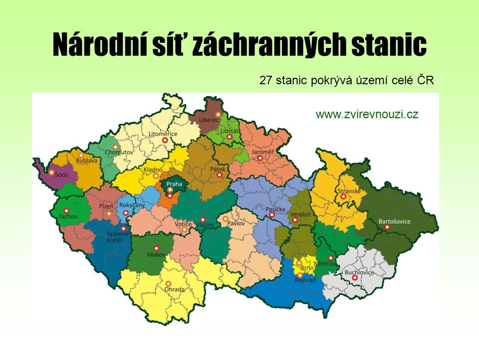Národní síť záchranných stanic 27 stanic pokrývá území celé ČR www.zvirevnouzi.cz