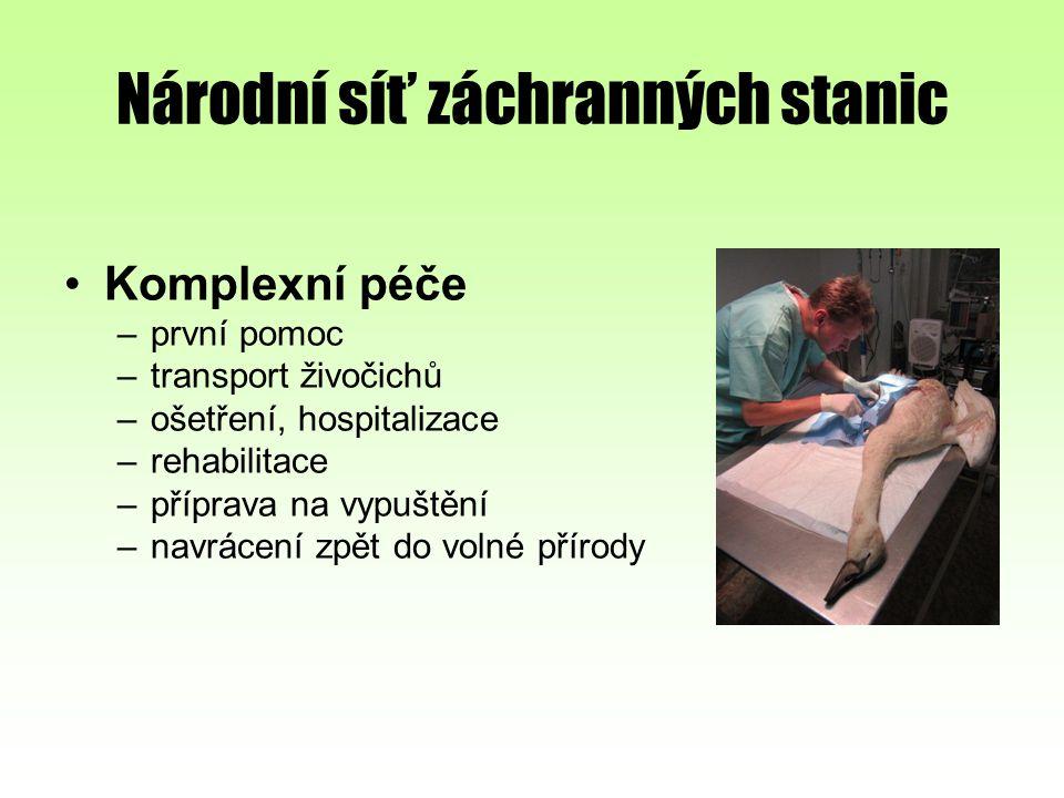 Národní síť záchranných stanic Komplexní péče –první pomoc –transport živočichů –ošetření, hospitalizace –rehabilitace –příprava na vypuštění –navráce