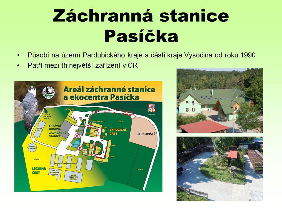 Záchranná stanice Pasíčka Působí na území Pardubického kraje a části kraje Vysočina od roku 1990 Patří mezi tři největší zařízení v ČR