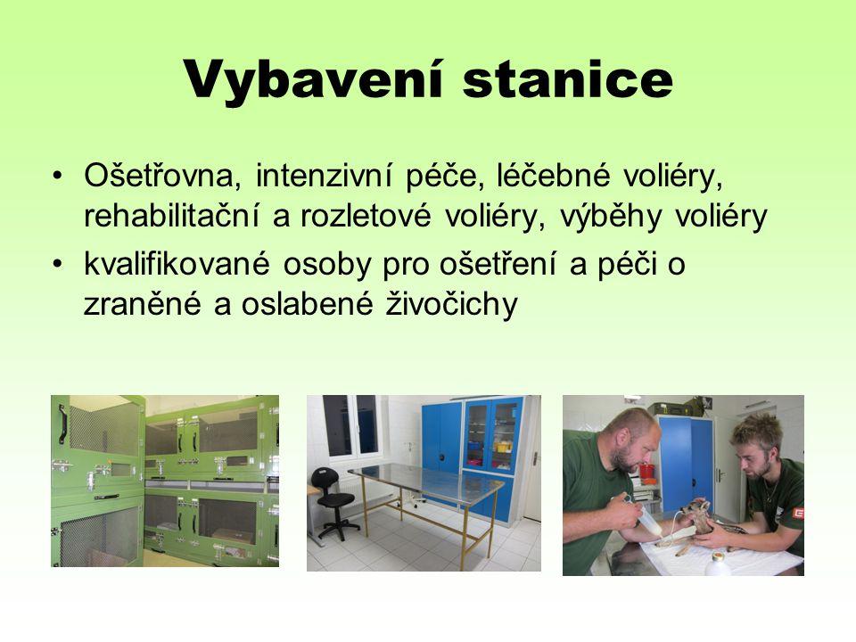 Vybavení stanice Ošetřovna, intenzivní péče, léčebné voliéry, rehabilitační a rozletové voliéry, výběhy voliéry kvalifikované osoby pro ošetření a péči o zraněné a oslabené živočichy