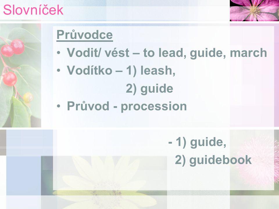 Slovníček Průvodce Vodit/ vést – to lead, guide, march Vodítko – 1) leash, 2) guide Průvod - procession - 1) guide, 2) guidebook