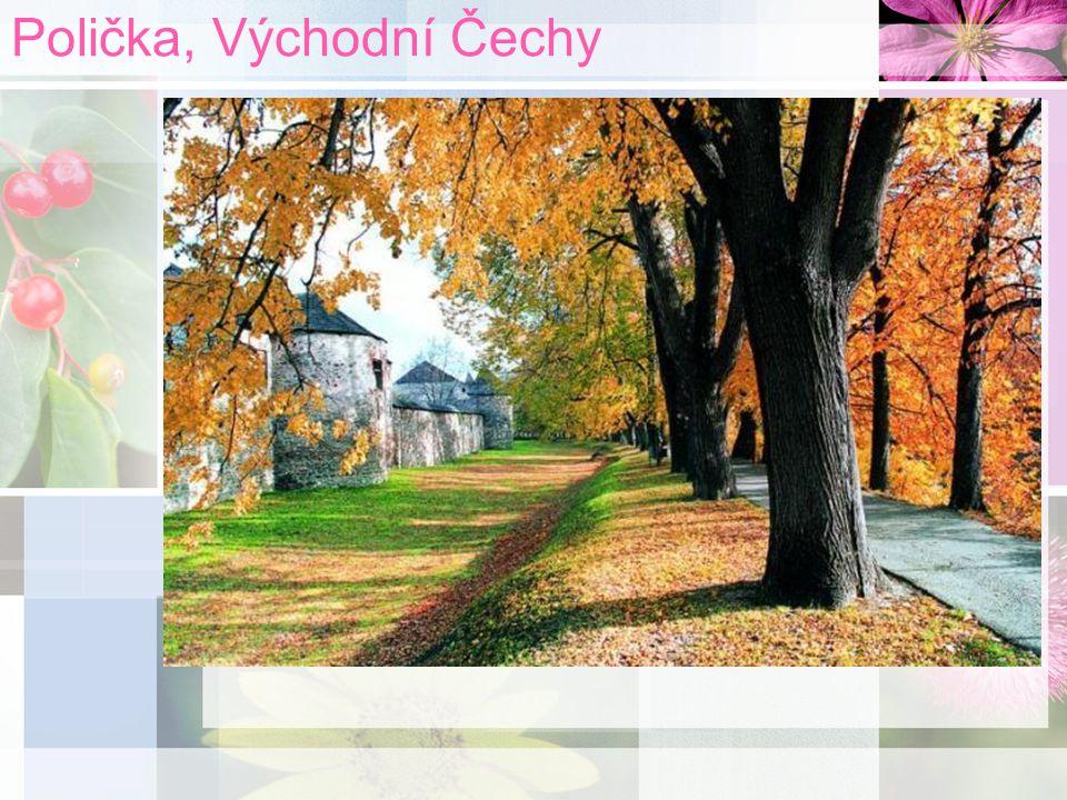 Polička, Východní Čechy