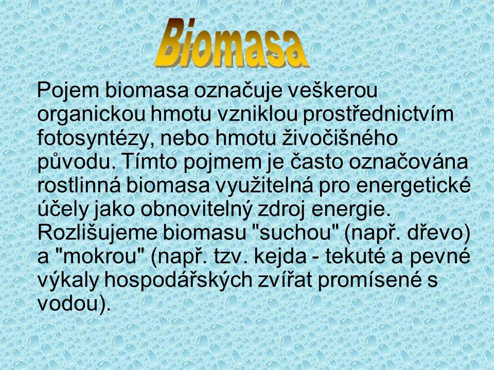Pojem biomasa označuje veškerou organickou hmotu vzniklou prostřednictvím fotosyntézy, nebo hmotu živočišného původu. Tímto pojmem je často označována