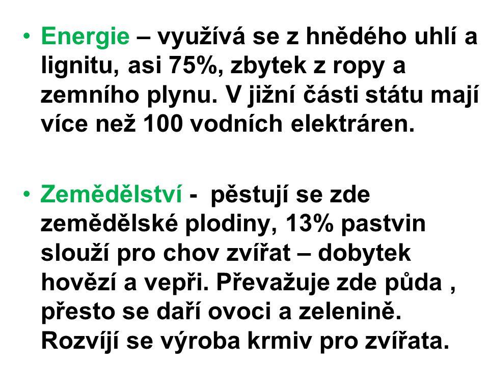 Energie – využívá se z hnědého uhlí a lignitu, asi 75%, zbytek z ropy a zemního plynu.